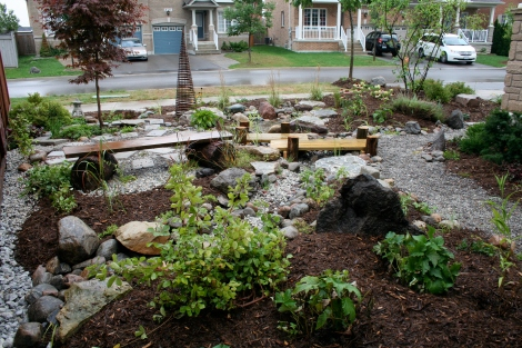 Rain Garden, Toronto & Region Conservation Authority