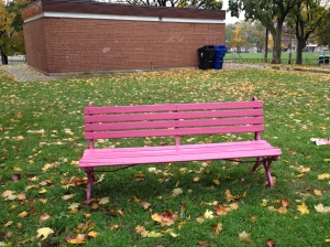 The popular purple benches in Fred Hamilton Park